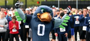 Blitz, a blue bird, is the mascot for the Seattle Seahawks. Photo via seahawks.com.